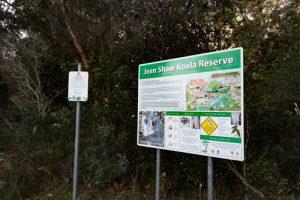 Koala Reserve Hawks Nest NSW
