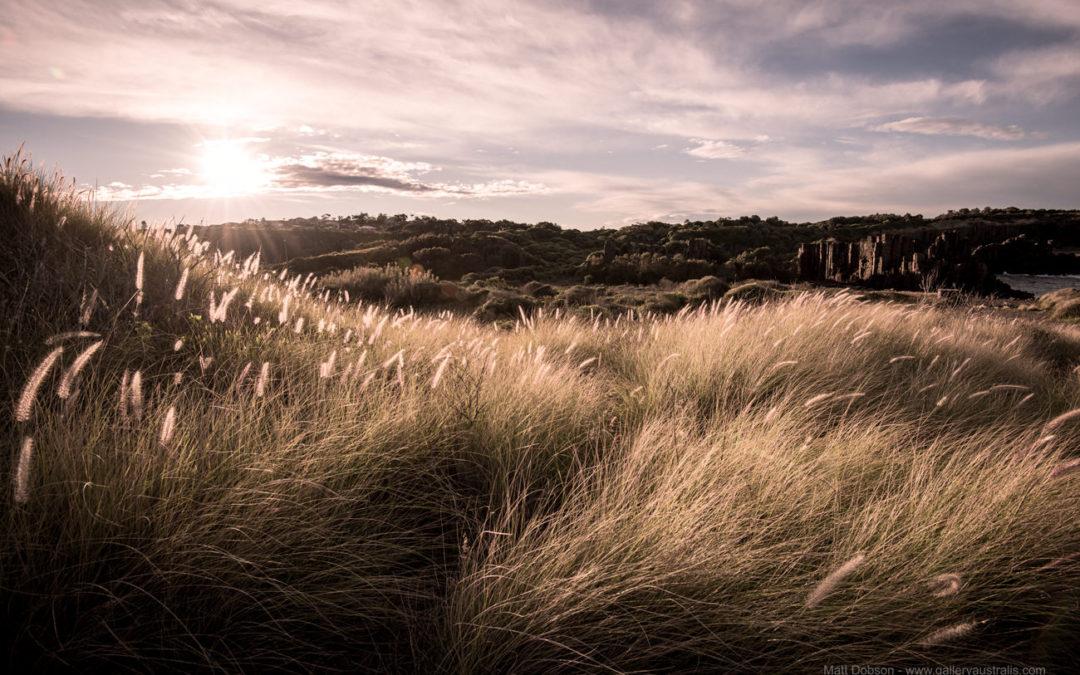 Bombo Quarry & Beach, NSW – Surfing, Fishing & Photography